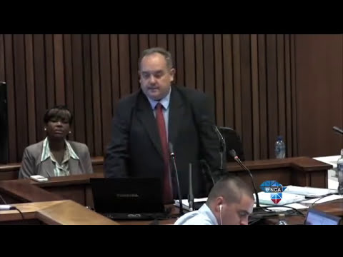 Pistorius Trial: Oscar and Reeva's WhatsApp messages - Part one