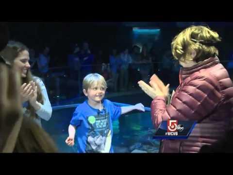 5 for Good: Boy donates birthday money to aquarium