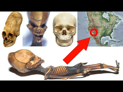 10 Reasons Why Aliens Exist Here On Earth