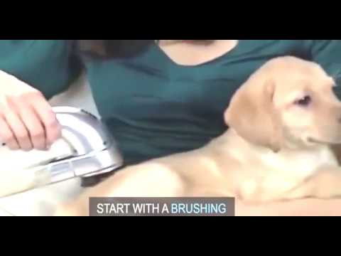 Pet vacuum fur cleaner- Tweet Gadgets