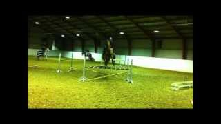 jumping training - Don Reno