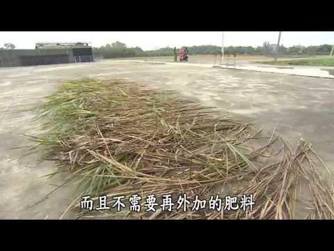 大愛-發現-20141220