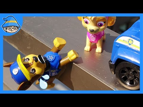 Paw Patrol Chase fall on the ground. Zuma Skye and Rubble Rescue him. | Shim
