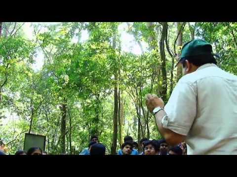 Bhavans Vidya Mandir Eroor Ragging Nature Bhavan's Vidya Mandir