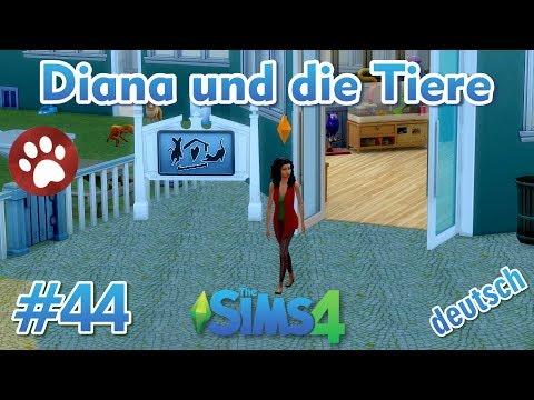 Sims 4 - Diana und die Tiere #44 - Diana besucht ein Tierheim