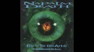 Napalm Death - All Intensive Purposes