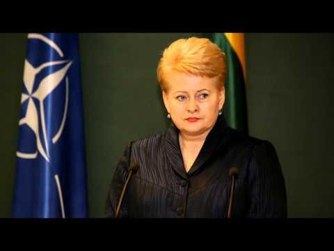 Prezidentė Dalia Grybauskaitė: viskas priklausys nuo situacijos Rytų Ukrainoje