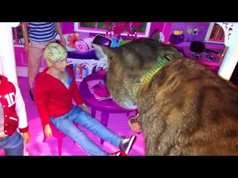 ** One Direction Crash Barbie's New Townhouse! OMG! .::Original Video::.