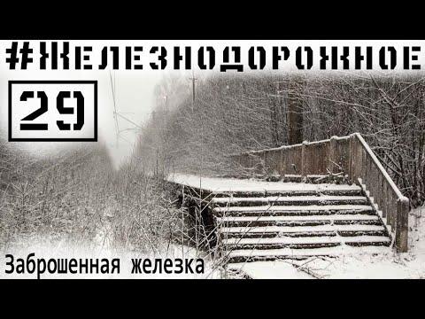Заброшенная железная дорога под Петербургом. Сталк.  #Железнодорожное - 29 серия. Краснофлотск