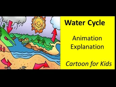 the water cycle animation video for kids youtube