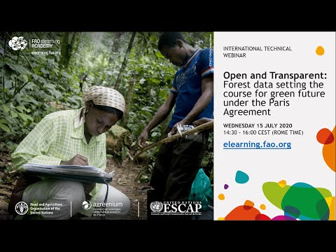 Open and Transparent: Forest data setting the course for green future under the Paris Agreement