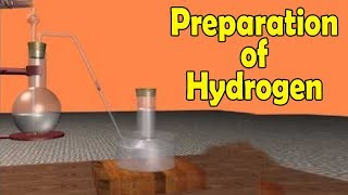 Preparation of Hydrogen in Lab   Science Experiment   Explanation on Science Experiment  