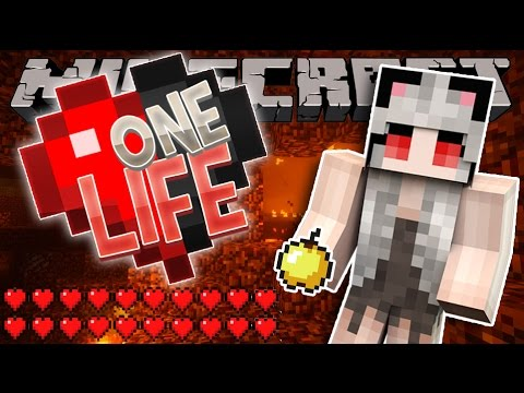 KILLING THE WITHER   Minecraft One Life SMP   Episode 18