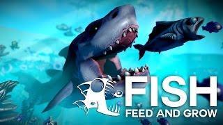 Fish Feed and Grow | Omoram MEGALODONUL, CEL MAI MARE PESTE