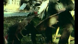 Wise men of Alaska (excerpt) - Alaszka bölcsei (részlet)