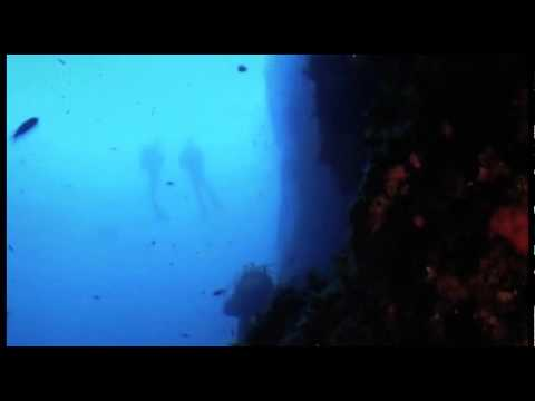 Blu Immersion Diving Cent...