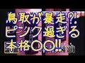 鳥取でピンク醤油が発売!実はピンク第二弾。第一弾は?!