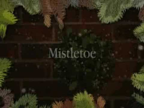 A Wallflower Christmas Lisa Kleypas Book Trailer