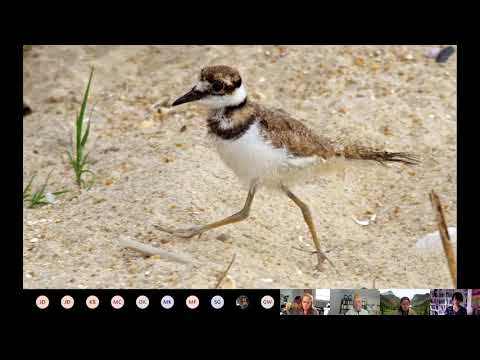 Rockland County Water Quality Coordinating Committee (WQCC) - Birding and Their Community Impact