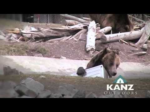 Bear Safe Pantry KANZ Outdoors