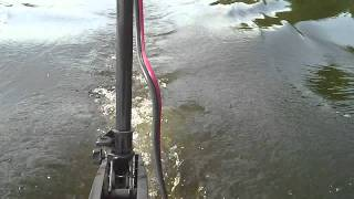 50lb of thrust on a Sea Hawk II