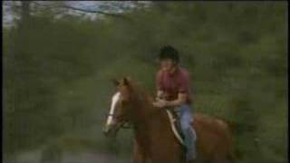 The Derby Stallion (2005) - Official Trailer
