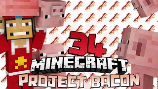 ♠ Project Bacon: I Hate Lava!!! - 34 - Modded Minecraft Survival @superchache39♠