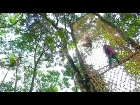 Dream Land Spices Park Munnar Kerala