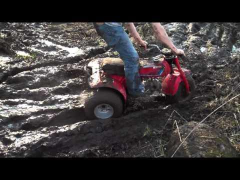 3-wheeler, Dirt Bike, and 4-wheeler mudding