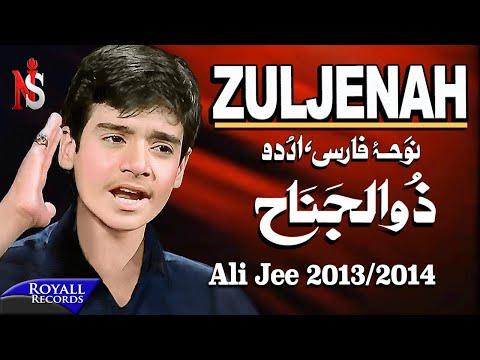 Ali Jee | Zuljenah | 2013-2014 | علی جی شگفت انگیز بچه پاکستان video