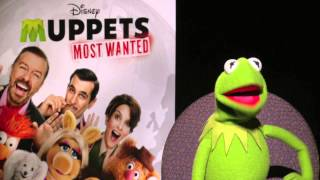 Kermit the FROG for Muppets most Wanted with Meli
