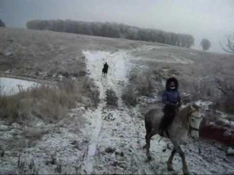 Зимний конный выезд
