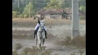 woman whip horse to gallop