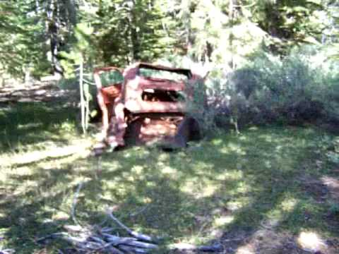 Old car in the forest, woods