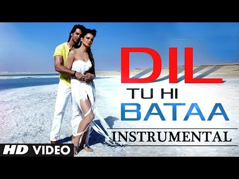 Dil Tu Hi Bataa Song Krrish 3 | Instrumental (Hawaiian Guitar...