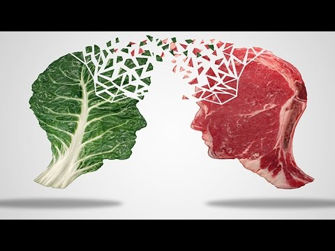 Meat Your Future - Are humans omnivores, carnivores or herbivores?