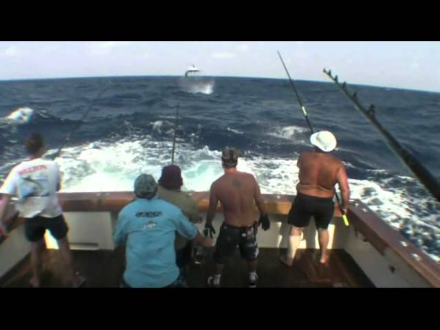 Little Audrey 2011 Marlin Fishing Cairns Highlights - Part 1
