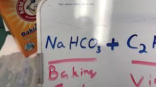 Baking soda and vinegar summative exam