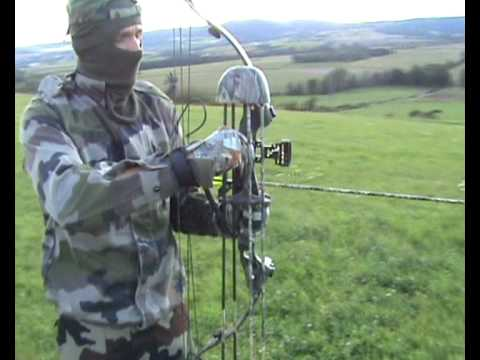 arc de chasse à cames / compound hunting bow