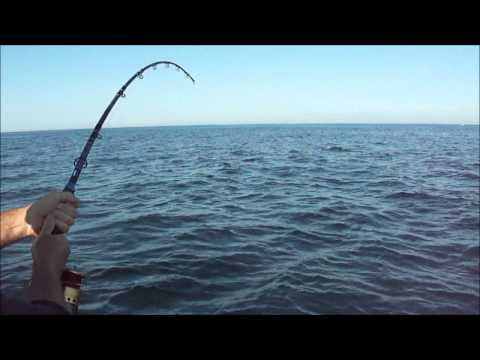 Deep Sea Fishing 2012- Big Porbeagle Shark