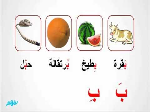حرف الباء  -  لغة عربية  -  للصف الأول الإبتدائي