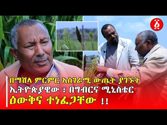 Ministry of Agriculture Denied Recognition for Ethiopian Researcher