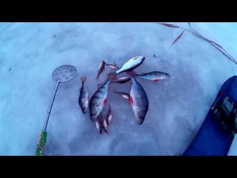 ловля в разлив видео