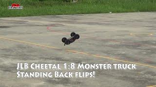 JLB 2.4G Cheetah 1:10 Scale 4 Wheel Drive High Speed Buggy RC Racing Car Backflips and Bashing!