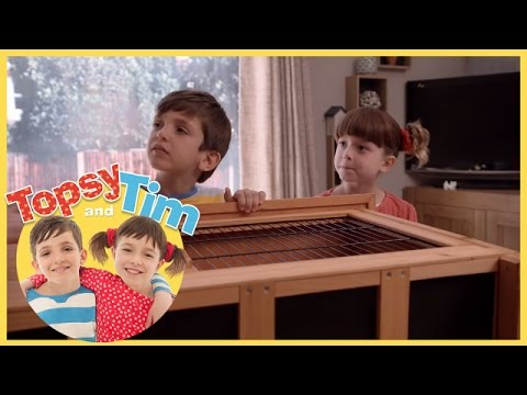 Topsy and Tim: Big Box (Episode 11)