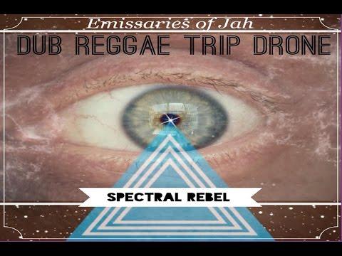 SPECTRAL REBEL - Dub Life - live dub reggae