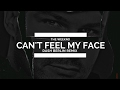 The Weeknd Can T Feel My Face Dash Berlin Remix mp3