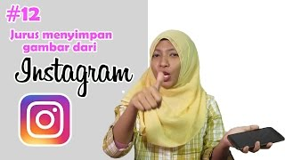 download lagu Jav Diary #12: Cara Nge-save Gambar Dari Instagram gratis