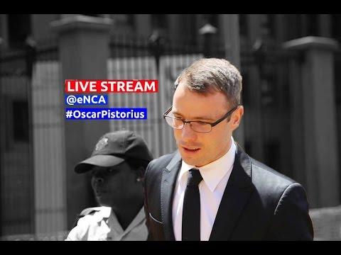 Oscar Pistorius murder sentencing - day 2