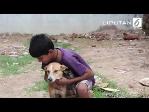 OOPS !!! Bocah 10 Tahun Kecanduan Menyusui ke Anjing